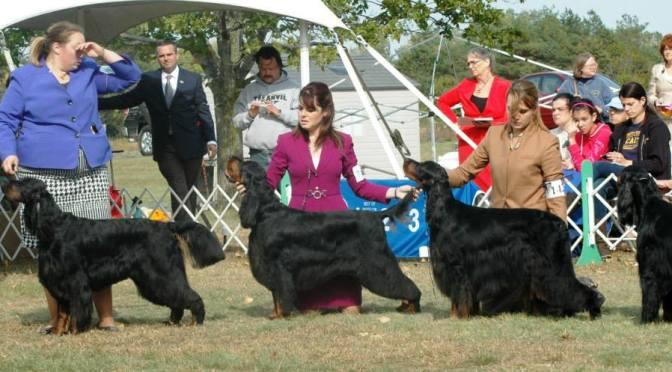 Success in Show Dogs: Breed Type Is Flexible, Not Liquid
