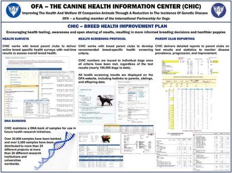 CHIC - breed health improvement plan