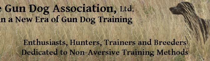 Ushering in a New Era of Gun Dog Training
