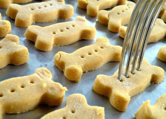 Pumpkin Dog Biscuit Recipe