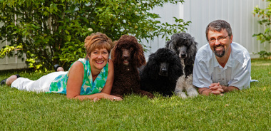 Dog Training Tips by Jennifer Skiba, Namastay Training, LLC