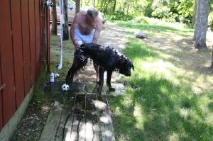Photo by Paul Doherty. David and Tucker getting an outdoor shower at Matha's Vineyard.