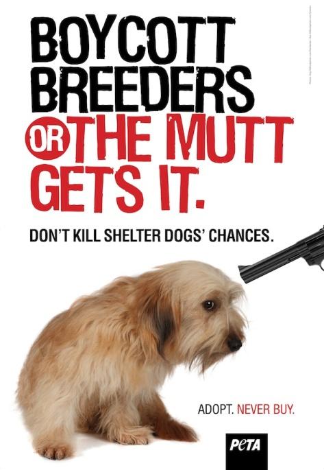 Boycott breeders
