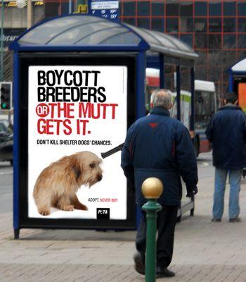 Boycott2