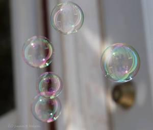 bubble6