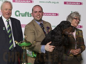 UK Top Vulnerable Breed Competition Winner is Gordon Setter