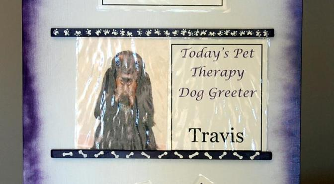 Therapy Dogs – Gordon Setters Giving Comfort