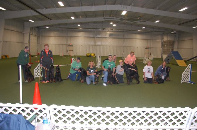 New Entry Level Agility Classes Added For Beginners