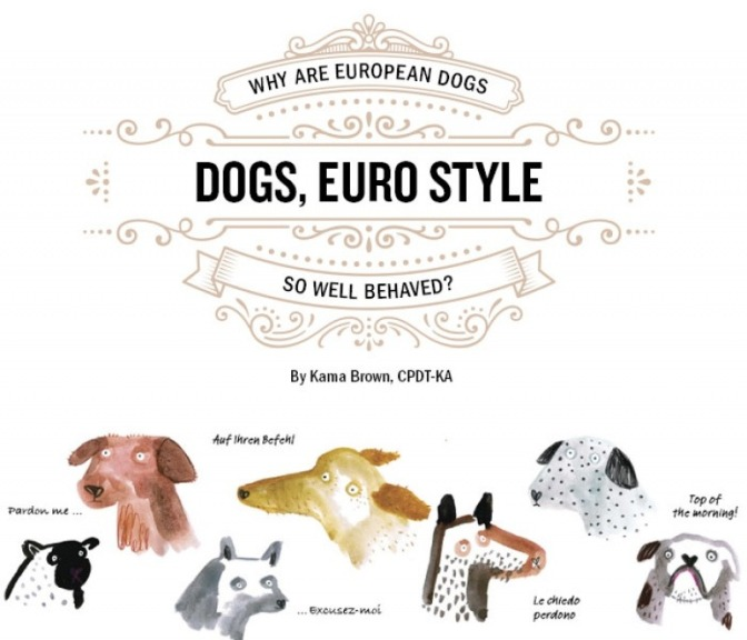 Why are European Dogs So Well Behaved?